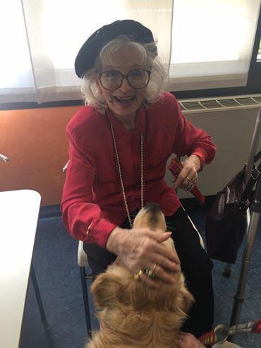 Pet therapy con cane addestrato Monza Brianza