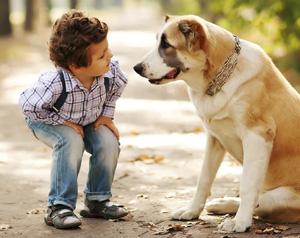 Pet Therapy e sindromi dell'apprendimento nel bambino
