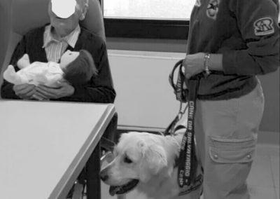 cane addestrato monza brianza pet therapy